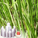 Vetiver Oil - Certified Organic