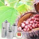 Anatto Extract 4 Percent Bixin Food Color