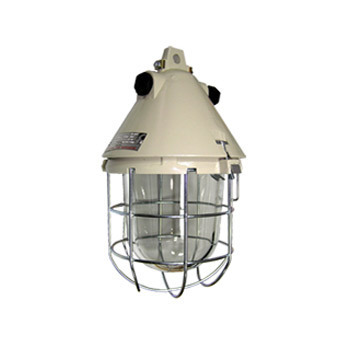 Ex protected pendant light fitting