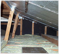 Basements And Crawlspaces