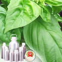 Basil Oil  - Certified Organic