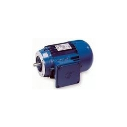 Face Mount Motors B-14
