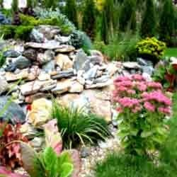 Landscaping Designing Services