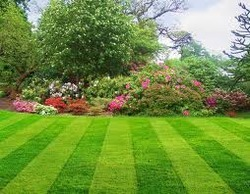 Garden Landscaping Services in Delhi
