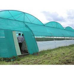 Green Tunnel Type Net House