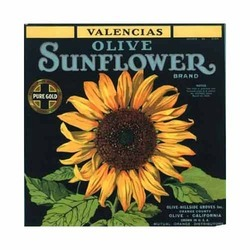 Labels For Sunflower Oil