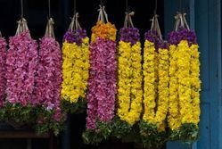 South Indians Garlands