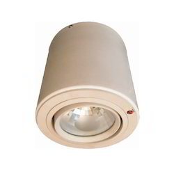 Waterproof Ceiling Light