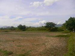 Property Lands