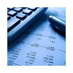 Audit Consultancy Service