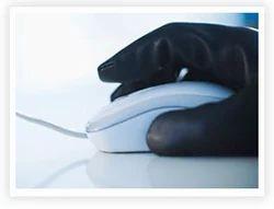 Cyber Crime Investigation Service