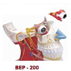 Media Section Head Model ( BEP-200 )