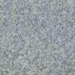 Shell White Granite