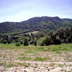 Property Land