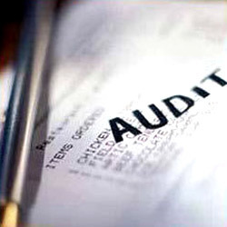 Auditing Services and Assurance Services