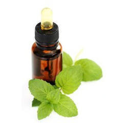 Herbal Mint Oils