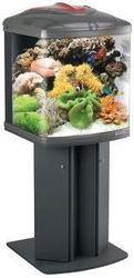Fish Tanks - Fish Tanks Manufacturer, Supplier & Wholesaler