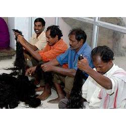 Barber Cutting Human Hair