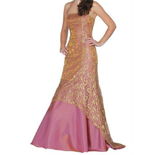 Party Wear Evening Gowns - View Specifications & Details of Evening ...
